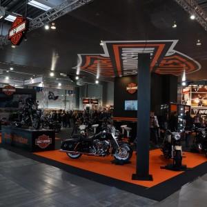 Harley-Davidson (fot. Michał Banach)