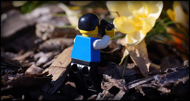 Wiosenne zdjęcia (fot. Michał Banach)