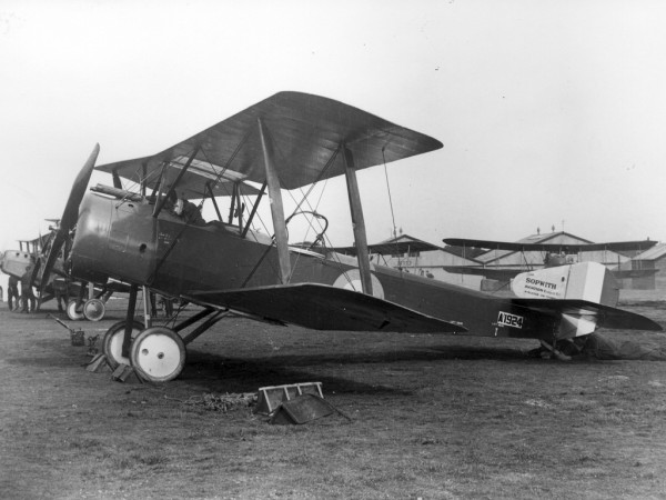 Sopwith 1-1/2 Strutter - to właśnie zmodyfikowana wersja tego samolotu trafiła na wyposażenie Argusa