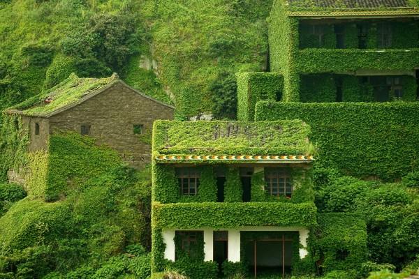 Opuszczone miasteczko na wyspie Shengshan - zdjęcie z 31 maja 2015 roku (fot. ChinaFotoPress/Getty Images)
