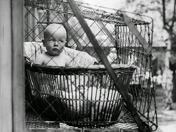 Baby Cage w praktyce