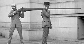 Punt gun - armata na ptaki