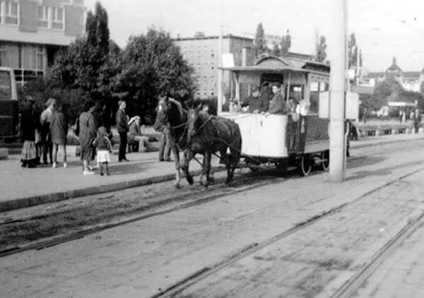 Odrestaurowany tramwaj konny w Poznaniu na ulicy Roosevelta