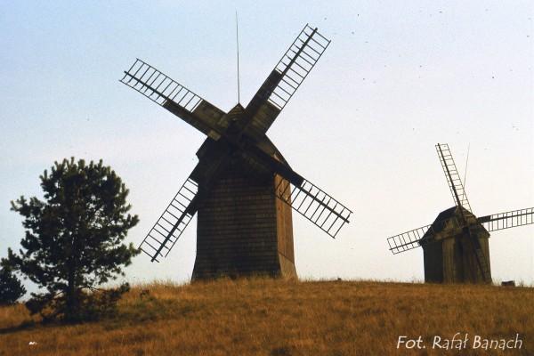 Stare wiatraki niedaleko drogi do Biskupina - 1988 rok (fot. Rafał Banach)