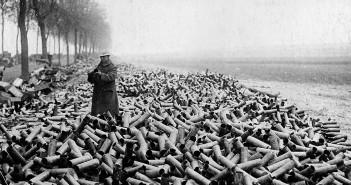 Samotny żołnierz tysiące łusek - zdjęcie