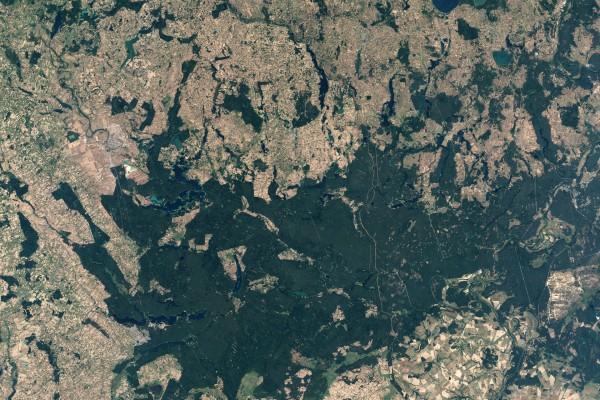 Dolina Rospudy - 11 września 2002 - satelita Landsat/Jesse Allen/NASA