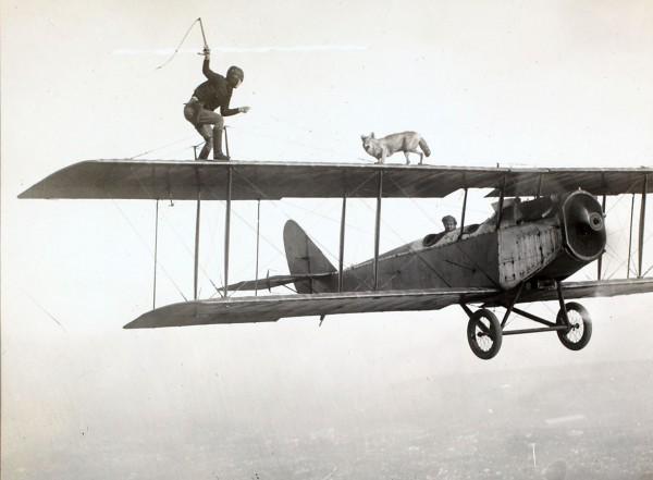 """Człowiek i pies na skrzydle samolotu w latach 20-tych (fot. Frank S. """"Luke"""" Luqueer)"""