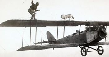 Człowiek i pies oraz samolot - zdjęcie
