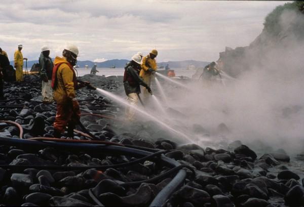 Akcja oczyszczania brzegu po wycieku z Exxon Valdez
