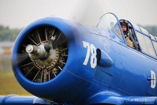 T-6 Texan - Aerofestival 2016 (fot. Michał Banach)