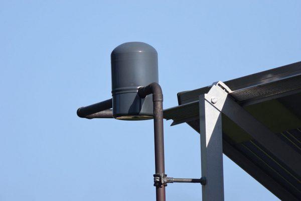 Przykładowe zdjęcie zrobione aparatem Nikon D3300 z podpiętym obiektywem Nikkor 1200 mm F11