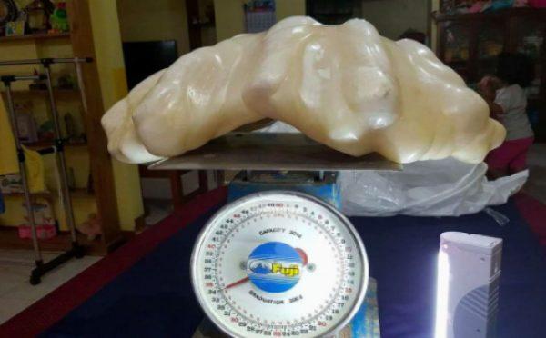 Olbrzymia, 34-kilogramowa perła znaleziona na Filipinach