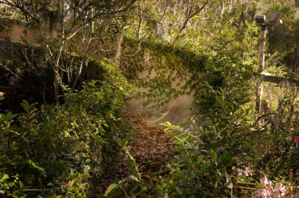 Disney River Country (fot. Seph Lawless)Disney River Country (fot. Seph Lawless)