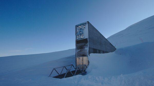 Svalbard - Globalny Bank Nasion (fot. Einar Jørgen Haraldseid)