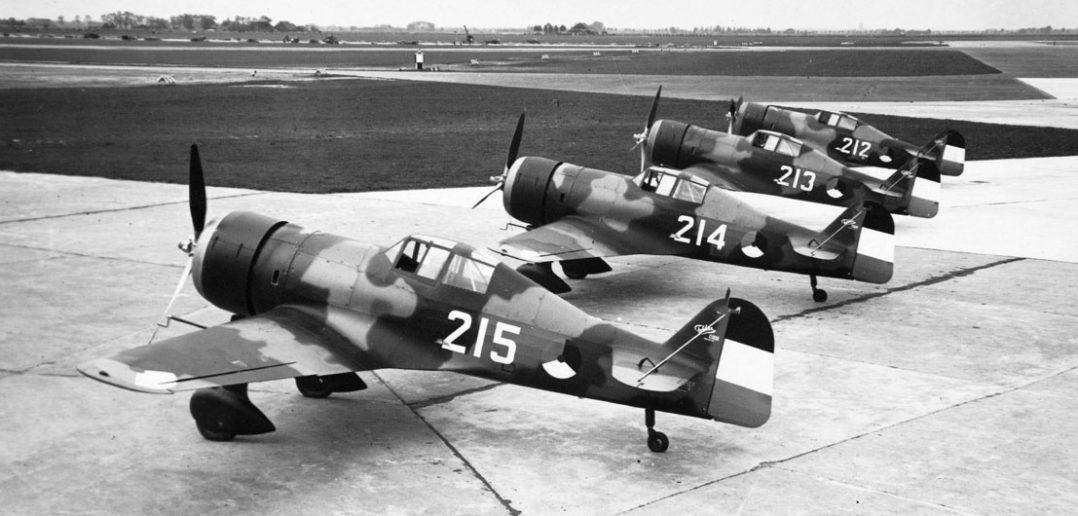 Fokker D.XXI - niepozorny holenderski myśliwiec