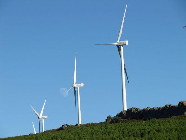 Turbiny wiatrowe (fot. pixabay.com)