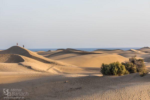 Dunas de Maspalomas - wydmy w okolicach Maspalomas (fot. Michał Banach)