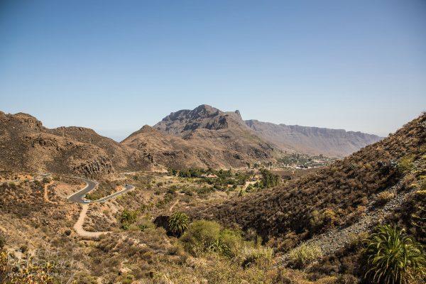 Dolina Tysiąca Palm (fot. Michał Banach)