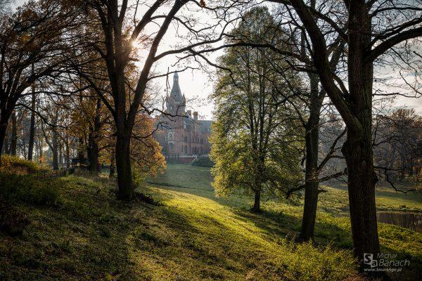 Zamek w Wąsowie (fot. Michał Banach)