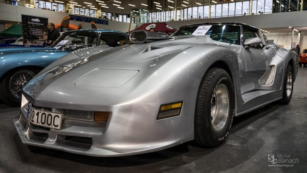 Chevrolet Corvette (fot. Michał Banach)