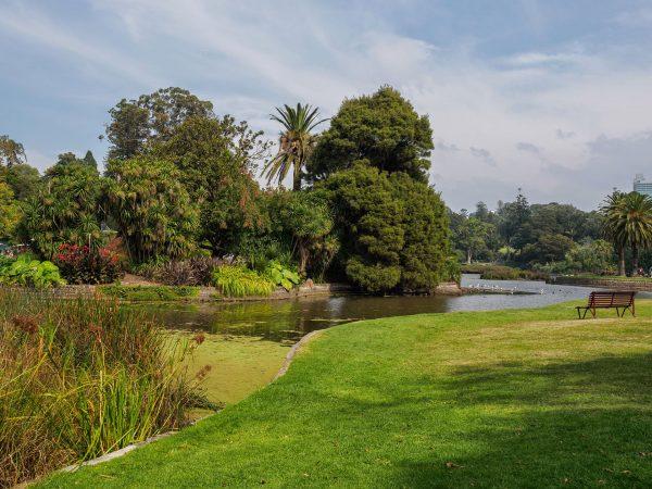 Royal Botanic Gardens, Melbourne, Australia (fot. Neil Parley/Wikimedia Commons)
