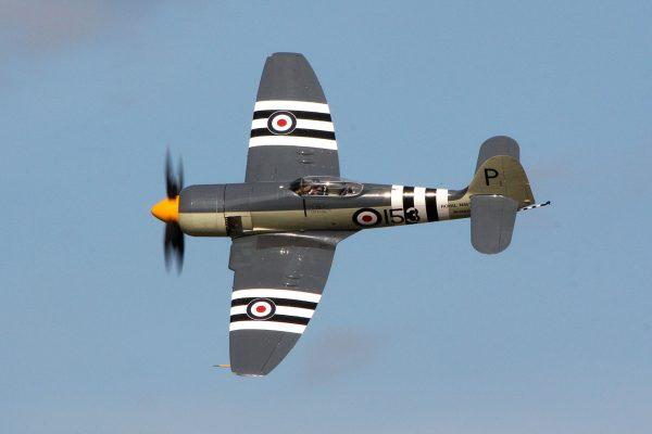 Hawker Sea Fury (fot. D. Miller)