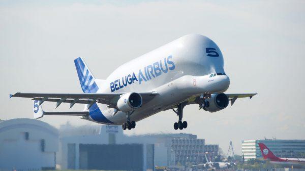 Airbus Beluga (fot. H. Gousse/Airbus)