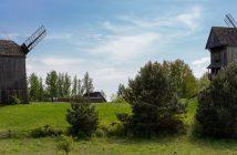 Wiatraki w Moraczewie