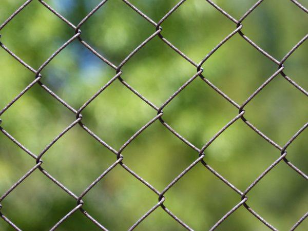 Montaż siatki ogrodzeniowej od A do Z