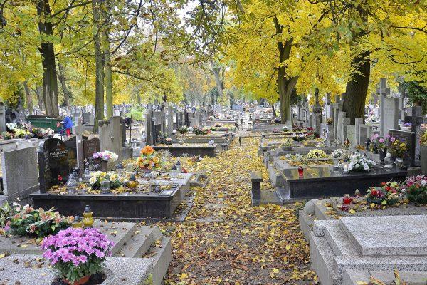 Cmentarz Bródnowski (fot. Adrian Grycuk)