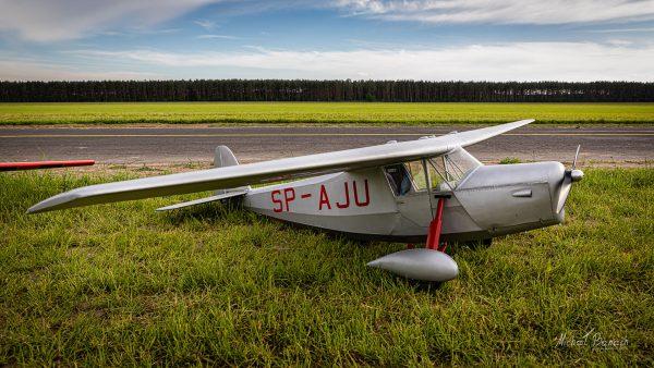 Model RWD-5 - Aeroklub Poznański (fot. Michał Banach)