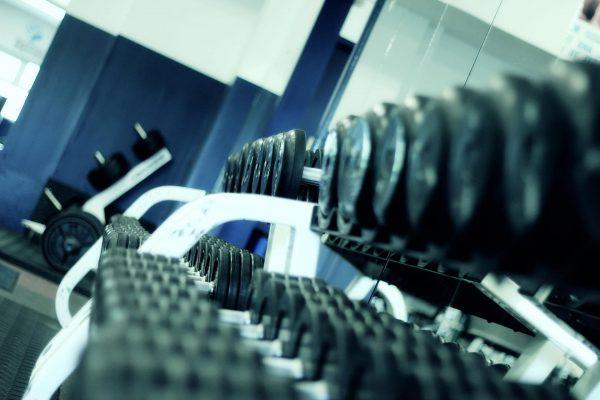Ciężarki i hantelki to sprzęty przydatne, np. przy robieniu pompek i ćwiczeniach na biceps i triceps.