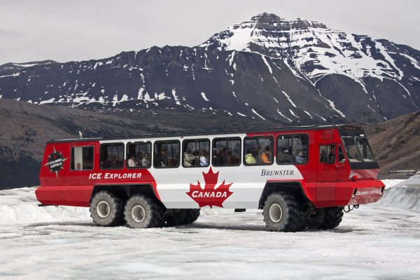 Terra Bus w Kanadzie (fot. Marilyn Peddle/Wikimedia Commons)