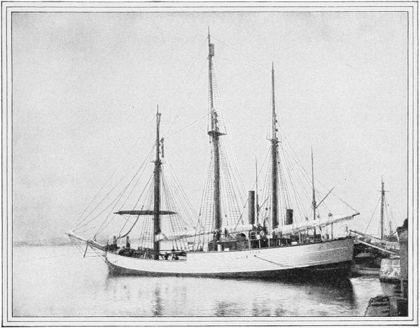 Fram około 1900 roku