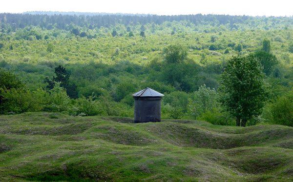 Okolice Verdun współcześnie (fot. F. Lamiot/Wikimedia Commons)