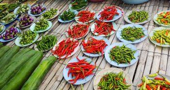 Papryka chili – właściwości i zastosowanie