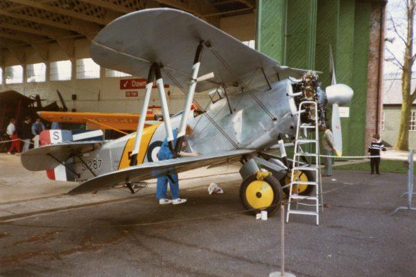 Replika Fairey Flycatcher
