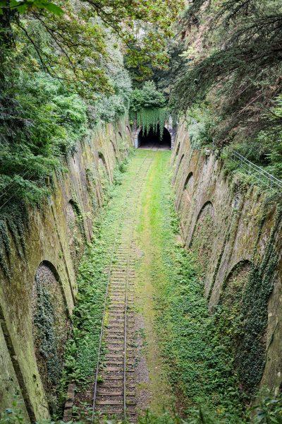 Chemin de fer de Petite Ceinture (fot. Myrabella/Wikimedia Commons)