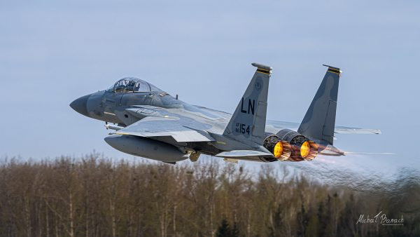 McDonnell Douglas F-15 Eagle (fot. Michał Banach)